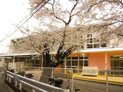 稲毛保育園3